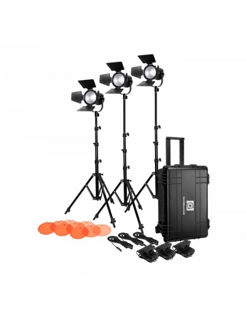 Nanguang Kit 3 Fresnel LED CN-30F con maleta trolley